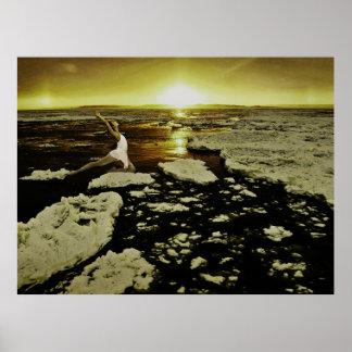 Dancer on Ice Sheet Poster