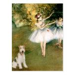 Dancer - Wire Fox Terrier #1 Postcard