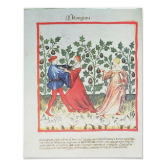 Dancers in front of Broom Plants, 13th century Poster