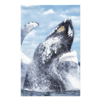 Dances with Whales Stationery