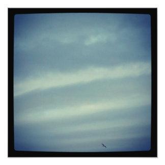 Dancing Across The Sky Photo Print