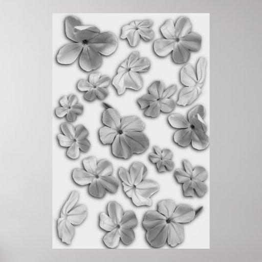 Dancing Blossoms Print