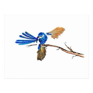 Dancing Blue Fairy Wren Australian Bird Postcard