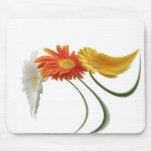 Dancing daisies mouse mats