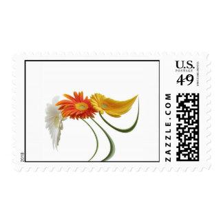 Dancing daisies postage stamp