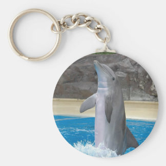 Dancing Dolphin Key Chain