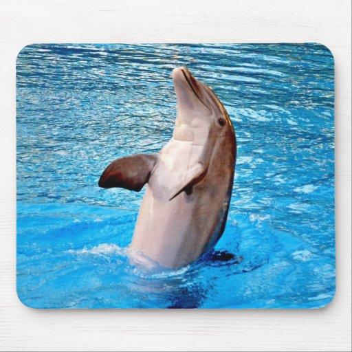 Dancing Dolphin Mousepad