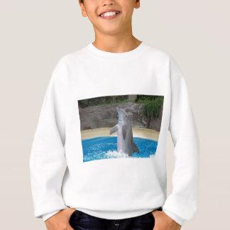 Dancing Dolphin Youth Sweatshirt