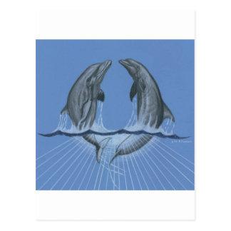 Dancing Dolphins Postcard