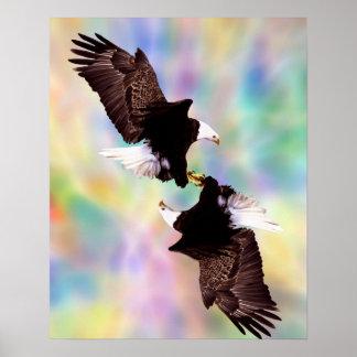 Dancing eagles posters