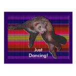 Dancing Ferret Post Cards