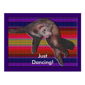 Dancing Ferret Postcard