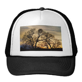 Dancing Forest Trees In The Golden Light Trucker Hat