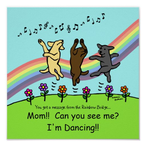 Dancing Labradors at the Rainbow Bridge Poster