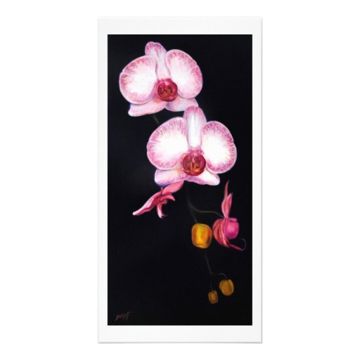 Dancing Orchids Photo Greeting Card