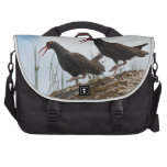 Dancing oystercatcher bags for laptop