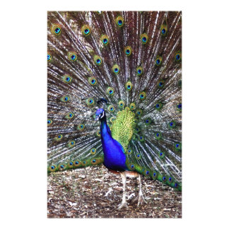 Dancing Peacock Personalized Stationery