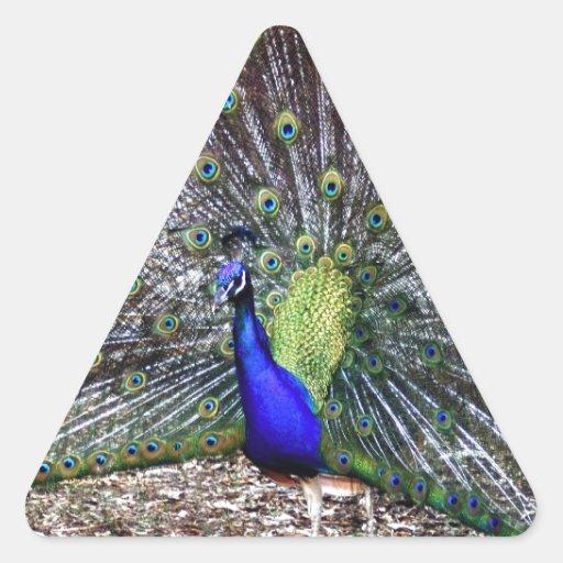 Dancing Peacock Triangle Sticker