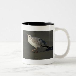 Dancing, Prancing Gull Two-Tone Coffee Mug