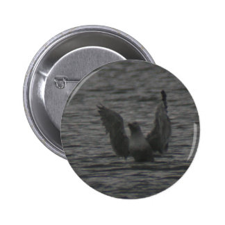 Dancing Seagull Pinback Button