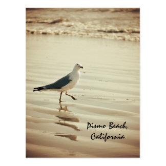 Dancing Seagull Postcard