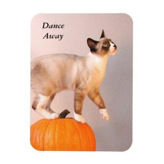 Dancing Siamese Cat on Pumpkin Humorous Funny Magnet