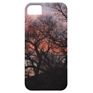 Dancing Tree Skeletons at Sunset iPhone 5 Covers