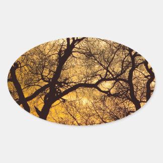 Dancing Trees Golden Sunset Oval Sticker