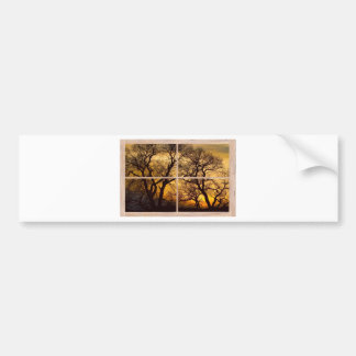 Dancing_Trees_Sunset_Picture_Window_Frame Photo_Ar Bumper Sticker
