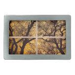 Dancing_Trees_Sunset_Picture_Window_Frame Photo_Ar Hebillas Cinturon Rectangulares