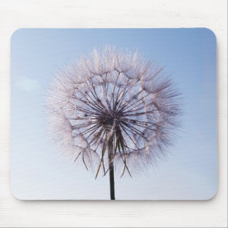 Dandelion against blue sky mouse pad