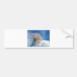 Dandelion and clouds bumper sticker