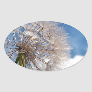 Dandelion and clouds oval sticker