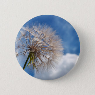 Dandelion and clouds pinback button