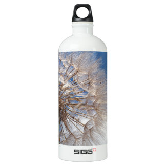 Dandelion and clouds water bottle