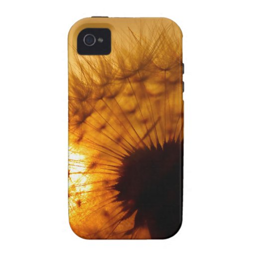 Dandelion and sunset vibe iPhone 4 cover