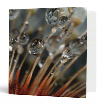 USA Themed Dandelion and water drops, CA 3 Ring Binder