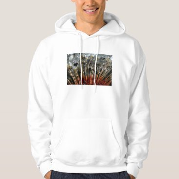 USA Themed Dandelion and water drops, CA Hoodie