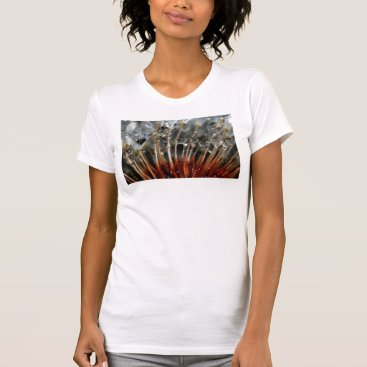 USA Themed Dandelion and water drops, CA T-Shirt