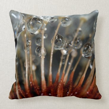 USA Themed Dandelion and water drops, CA Throw Pillow