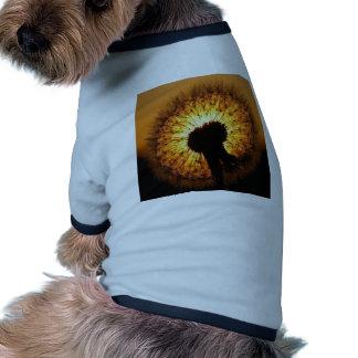Dandelion at Sunset Dog Shirt