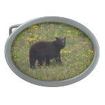 Dandelion Bear Oval Belt Buckles