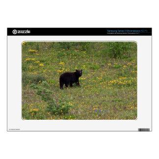 Dandelion Bear Samsung Chromebook Decal