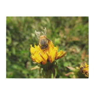 Dandelion Bee Wood Print