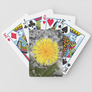 Dandelion Bicycle Playing Cards