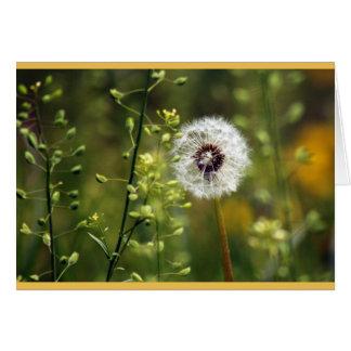 Dandelion Birthday Wishes Card