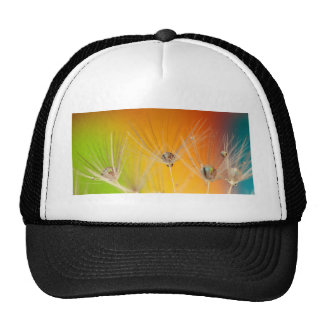 Dandelion Blossoms Flowers Destiny Peace Love Art Mesh Hats