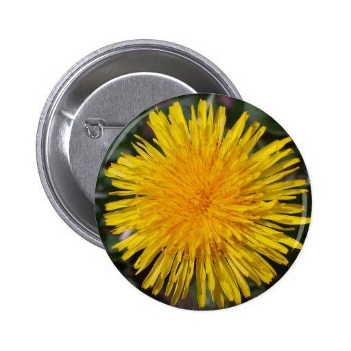 Dandelion button pin