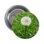 Dandelion Buttons