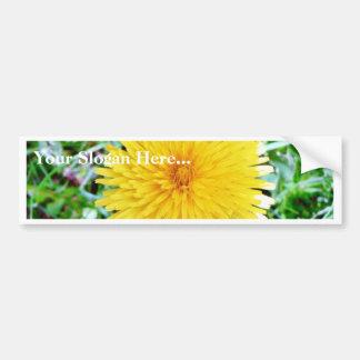 Dandelion Car Bumper Sticker